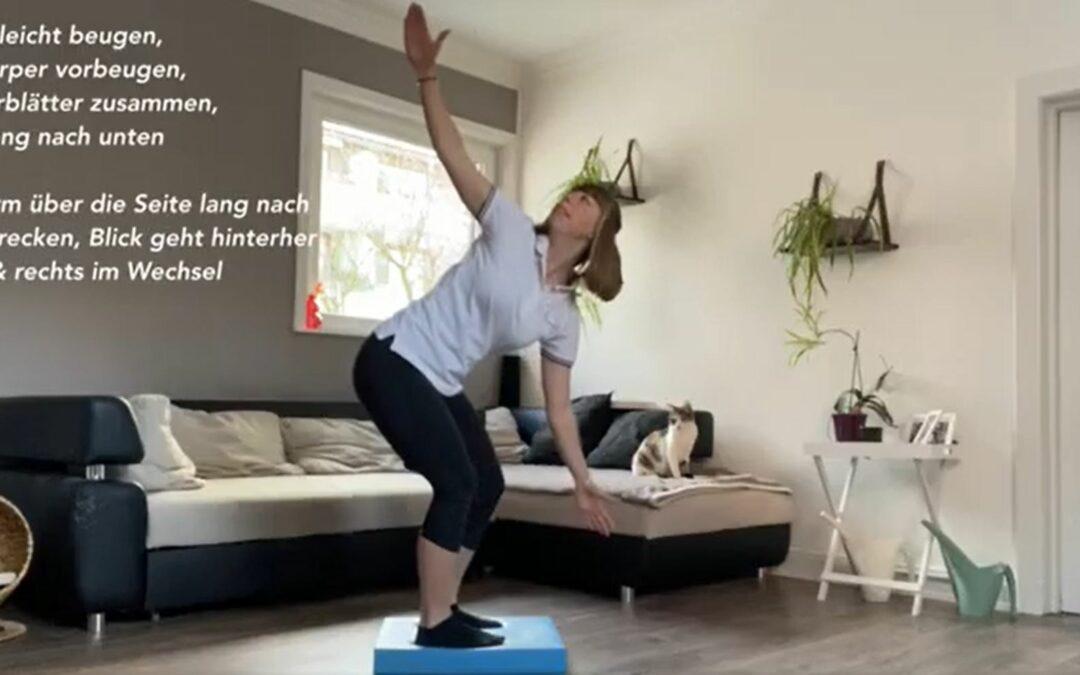 Workout mit dem Balance Pad Teil 2